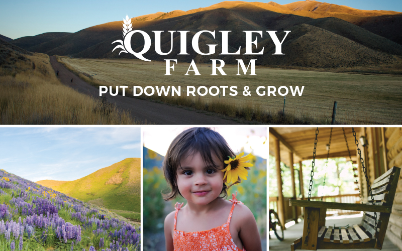 Quigley Farm put down your roots and grow